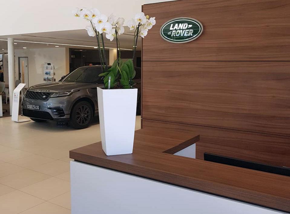 pots-plants-desk